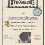 strześniewska dominika 001
